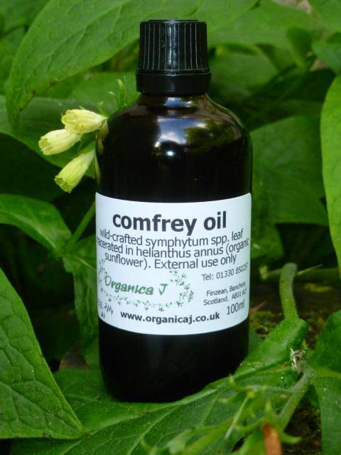 Comfrey Macerate 2014